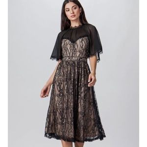 Flying Tomato Mesh Lace Fit & Flare Dress,  Size M